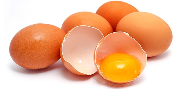 Benefícios da casca do ovo