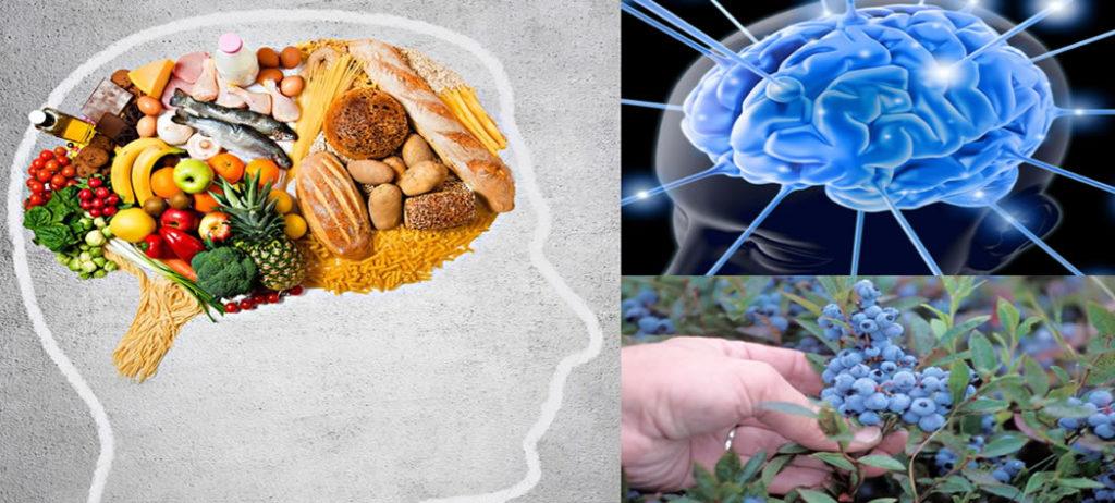 Melhores alimentos para a memória