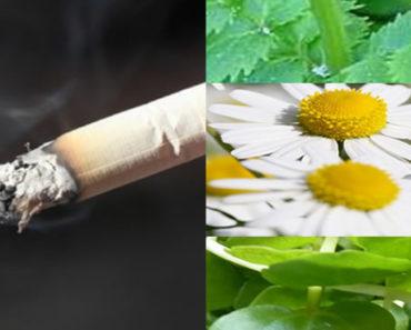 remédios caseiros para parar de fumar para sempre