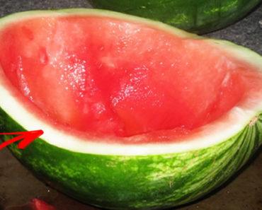 casca de melancia