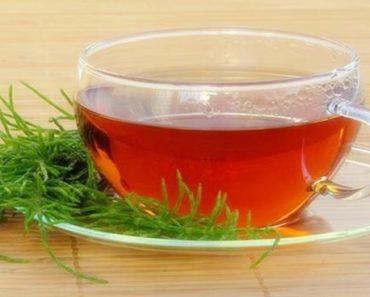 benefícios do chá de cavalinha
