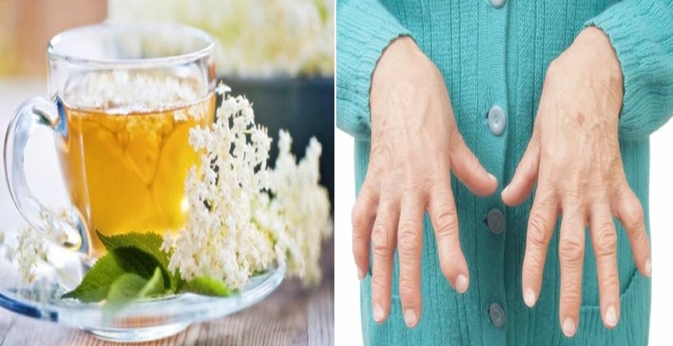 Benefícios do Chá de Sabugueiro