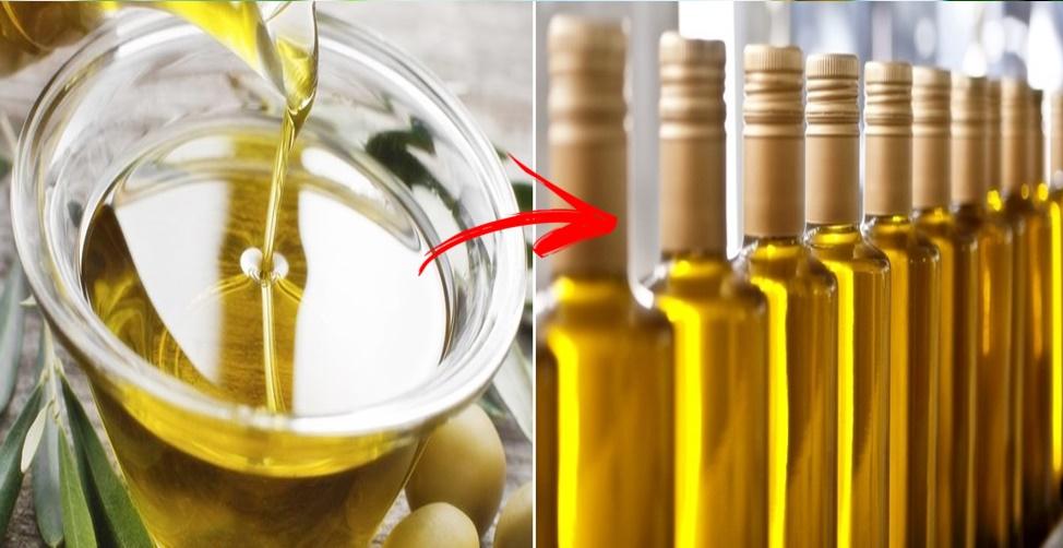 como escolher o melhor azeite de oliva