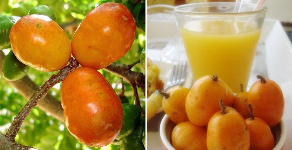 benefícios do suco de seriguela
