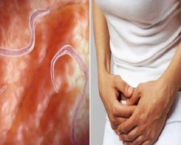 sintomas de vermes