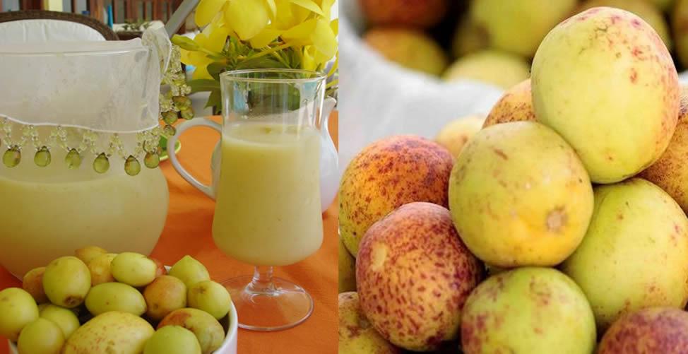 benefícios do suco de mangaba