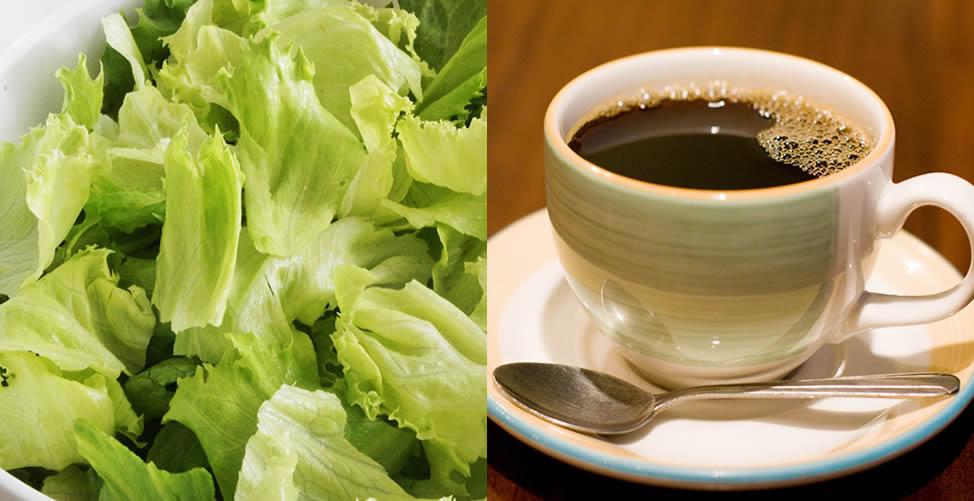 como funciona a dieta da salada