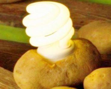 iluminar um quarto com uma batata