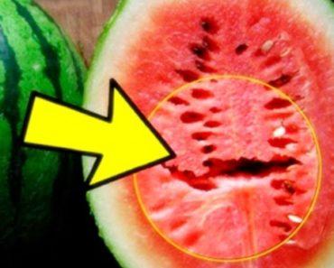 rachaduras da melancia