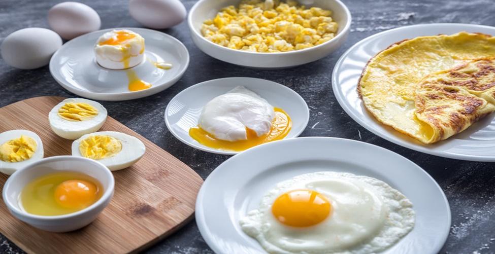 Mitos e verdades sobre o ovo