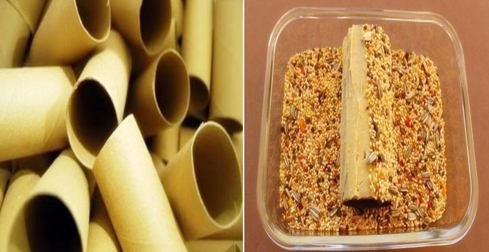 reutilização dos rolos de papel higiênico