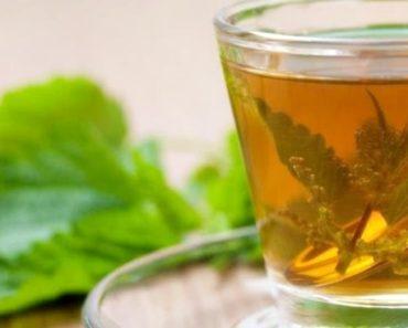 remédios caseiros para reduzir ácido úrico