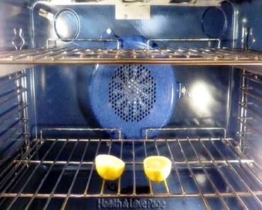 soluções caseiras para espantar moscas