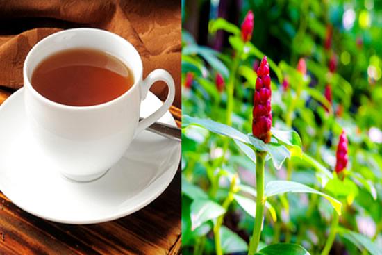 Chá de Cana do Brejo