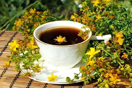 Chá de Erva de São João