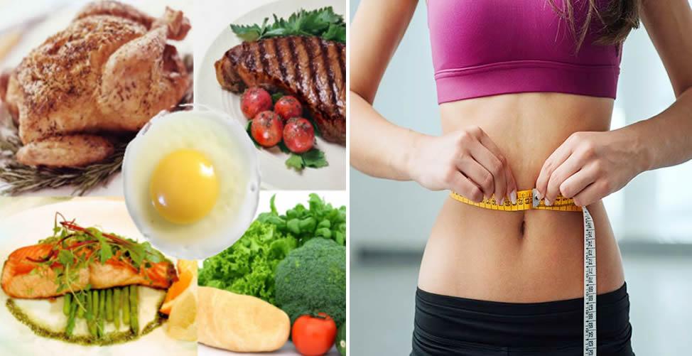 Dieta da Proteína