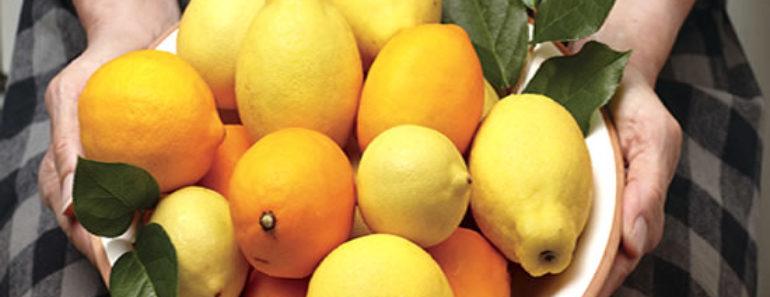 benefícios-do-Limão-Siciliano