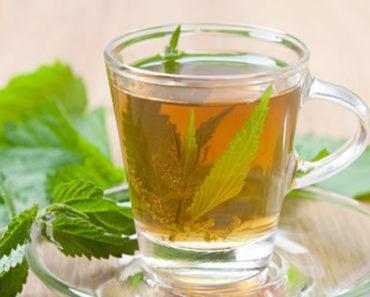 benefícios-do-chá-de-melissa