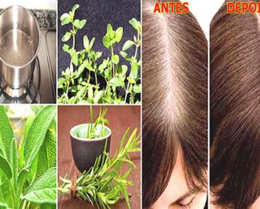 como recuperar a cor natural do cabelo