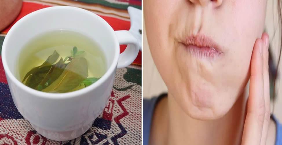 Benefícios do Chá de Guiné-Dor de Dente