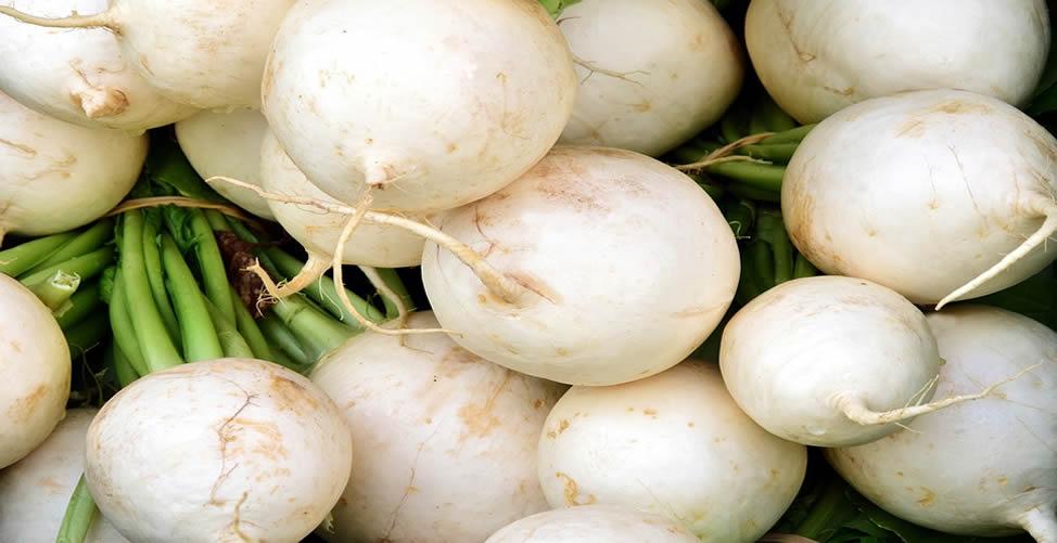 Benefícios do Rabanete Branco