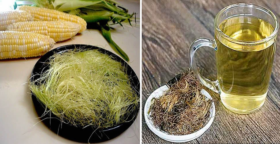 Como Baixar a Creatinina - chá de Seda de Milho