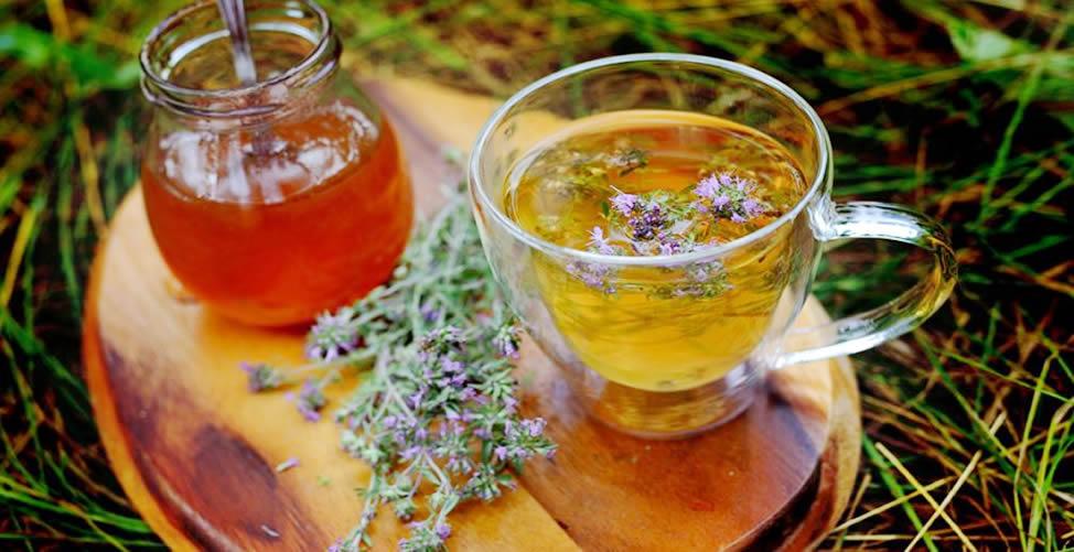 Remédio Caseiro Para Rinite - Chá de Tomilho