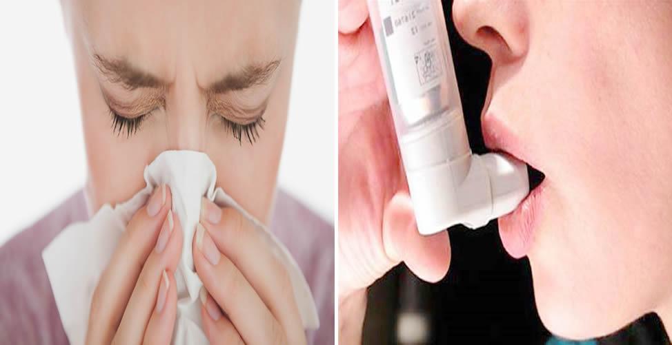 Remédios Caseiro Para Alergia Respiratória