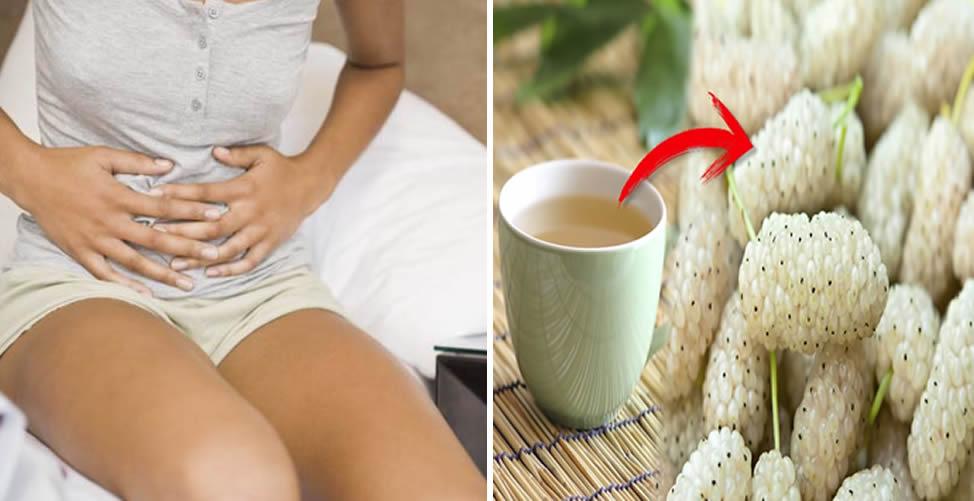 Benefícios da Amora Branca - Alivia colicas