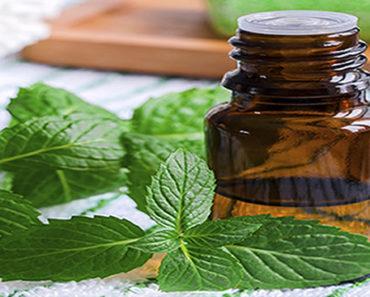 Benefícios-do-óleo-de-hortelã
