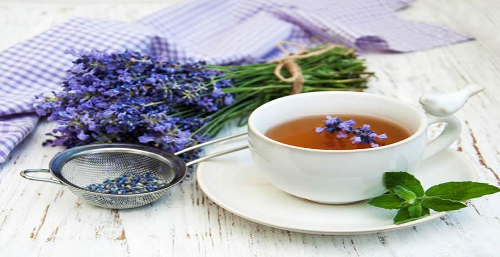 Benefícios do chá de Alfazema