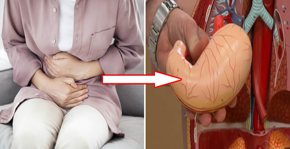 Conheça Remédio Caseiro Para Problemas Estomacais