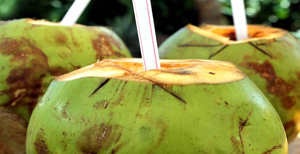 Remédio caseiro para vermes - Água de Coco