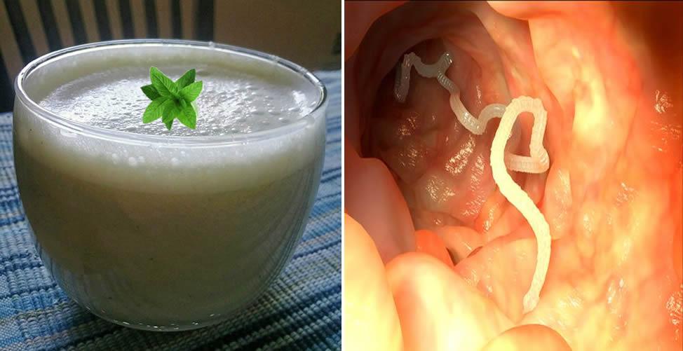 Remédio caseiro para vermes