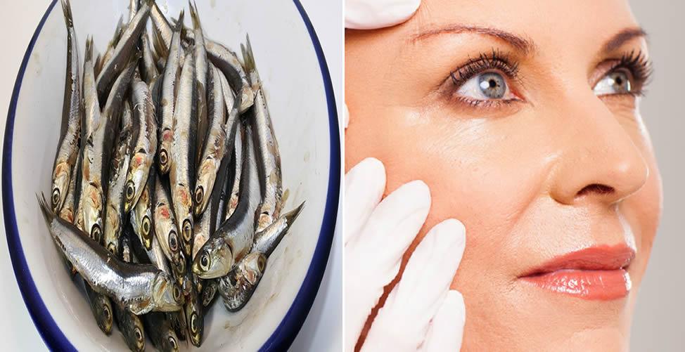 Benefícios da Anchova Para a Pele