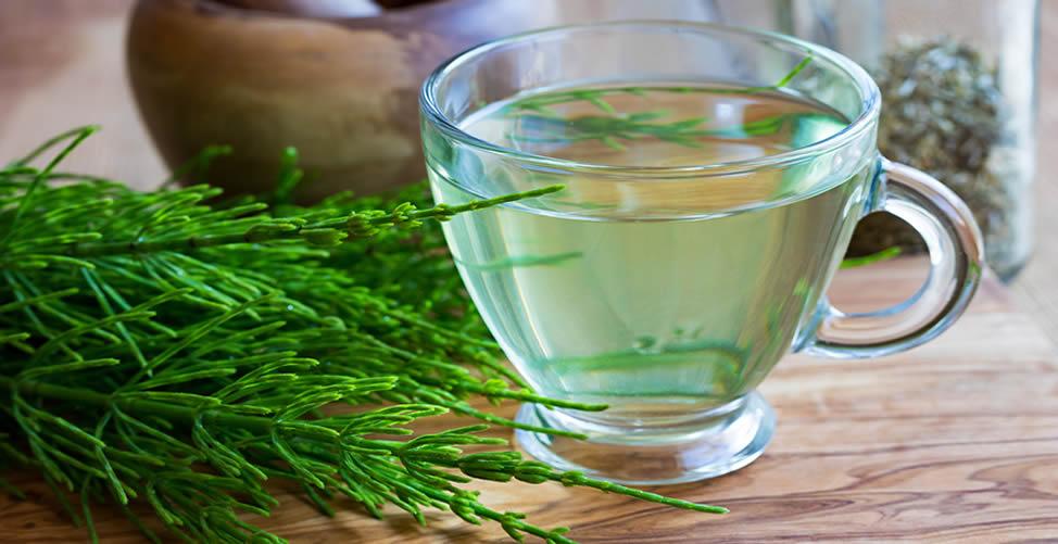 Remédio Caseiro Para Ácido Úrico-Chá de Cavalinha
