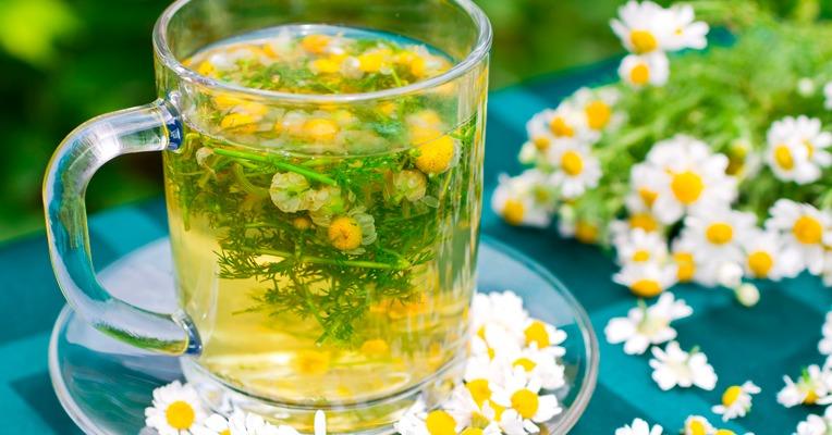 chá de camomila para a gastrite